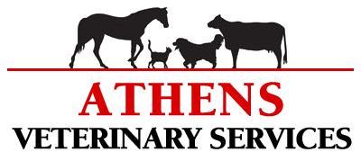 Athens Veterinary Services